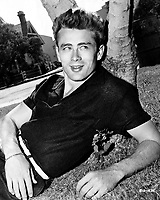 Rebel Without a Cause (1955) <br /> Promo shot of James Dean<br /> *Filmstill - Editorial Use Only*<br /> CAP/KFS<br /> Image supplied by Capital Pictures
