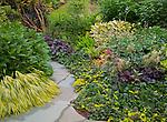 Vashon-Maury Island, WA<br /> Pathway through a summer perennial garden featuring hakonechloa macra 'aureola', bergenia, hypericum, vibernum and heucheras
