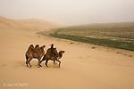 Khongoryn Els, dunes de Khongoryn au sud de la Mongolie vers le désert de Gobie. Mongolie.The Khongoryn Els is some of the largest and most spectacular sand dunes in Mongolia.