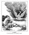 """A Phoenix! The Franco-British Bird-Watchers. """"This is something like a specimen."""""""