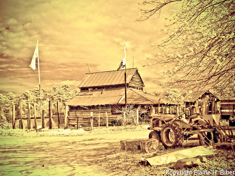 Allis Chalmers tractor with old barn