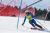 17th March 2018, Àvet Slope, Soldeu, Andorra; FIS Alpine Ski European Cup, Slalom Ladies Finals; 4 GALLI Jole from ITA  during the Giant Slalom Final
