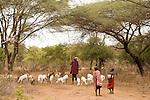 TANZANIA. Longido Mountain Area..August 3rd 2009..Maasai people..