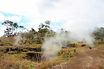 Kilauea Steam Vents, Hawaii