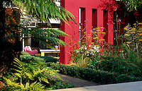 A red vermillion rendered wall divides the garden, planted with summer perennials and edged in box