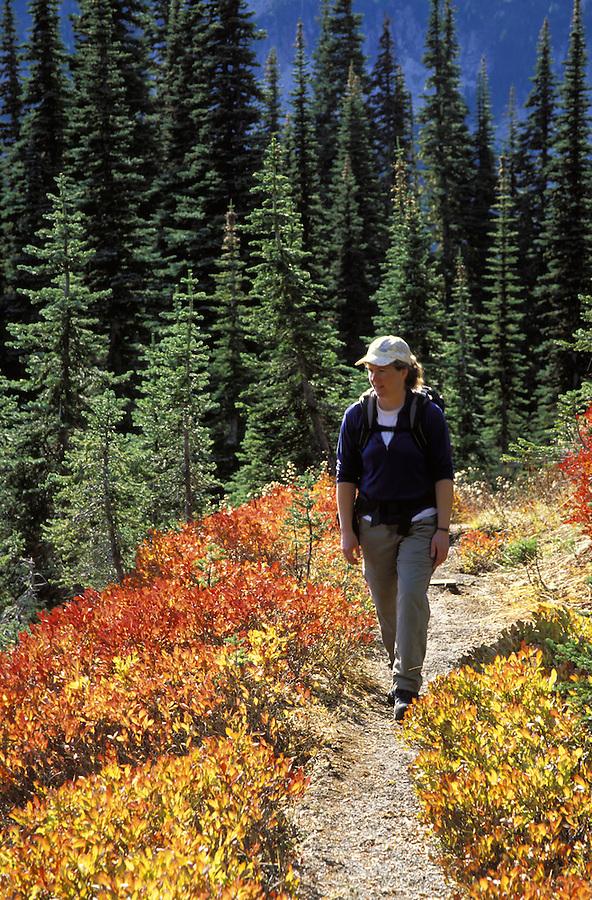Woman hiking on trail through fall colored meadows, Mazama Ridge, Mount Rainier National Park, Lewis County, WA