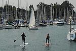 Paddleboarding in Santa Cruz Harbor