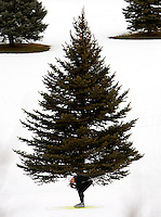 Mountain Dell - Mountain Dell - A cross-country skier slides past a pine tree at the Mountain Dell Golf Course Wednesday afternoon.; 1.03.2007