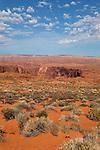 Horseshoe Bend, Page Arizona, USA