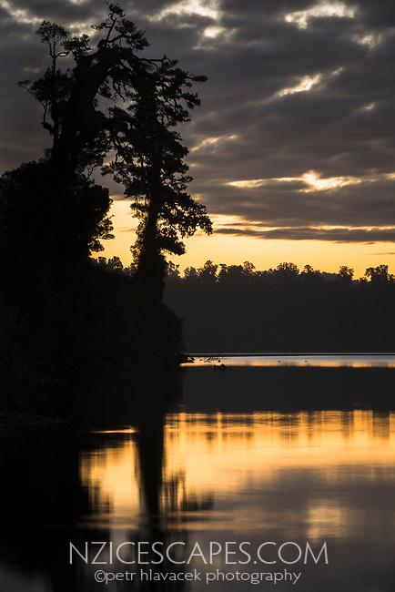 Sunset at Lake Wahapo near Whataroa with kahikatea tree, Westland Tai Poutini National Park, UNESCO World Heritage Area, West Coast, New Zealand, NZ