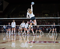STANFORD, CA - December 1, 2018: Meghan McClure, Kathryn Plummer, Holly Campbell, Jenna Gray at Maples Pavilion. The Stanford Cardinal defeated Loyola Marymount 25-20, 25-15, 25-17 in the second round of the NCAA tournament.