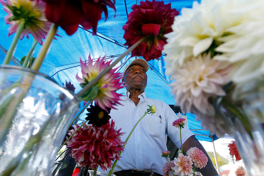 Curtis Morton, Jr. of C-ville Garden's specializes in selling dahlia's Saturday at the City Market in downtown Charlottesville, Va. The market features a variety of vendors and is open every Saturday through December.