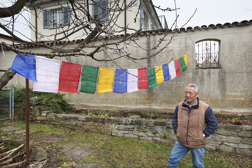 Switzerland. Canton Bern. Muri. Thubten Purang in his garden. Lung ta are tibetan prayer flags of square or rectangular shape, and are connected along their top edges to a long string or thread. The swiss tibetan man is an Aeschimann's child who arrived 50 years ago in Switzerland to receive custody on a private initiative by an influential Swiss industrialist, Charles Aeschimann. In 1962, Charles Aeschimann agreed with the Dalai Lama to take 200 children and place them in Swiss foster homes and give them a chance for a better life and a good education. Most of the children still had parents in exile or in Tibet, just a few were orphans. 24.02.2015 © 2015 Didier Ruef