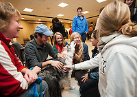 Occidental College students take a break from finals to pet dogs in Herrick Chapel on Monday, December 12, 2011 in Los Angeles, Calif. The event, sponsored by the Office of Student Life, featured between 15-20 dogs from the nonprofit group Therapy Dogs International. (Photo by Marc Campos, Occidental College Photographer)