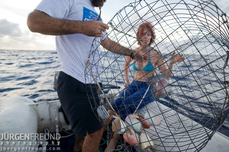 Nautilus trap is pulled up from 200 meter depth
