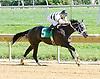 Seventeenohsix winning at Delaware Park on 9/19/12
