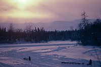 Sled Dog Teams on Skwenta River @ Sunset '85 Iditarod<br /> AK