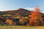 Mount Norwottuck in fall color from Mount Pollux.