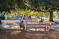 Late afternoon in the Academic Quad, Feb. 5, 2016.<br /> (Photo by Marc Campos, Occidental College Photographer)