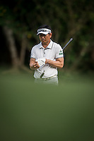 Y E YANG of Korea in act at the third round of the Hong Kong Open golf tournament in Fanling Golf Club, Hong Kong,  24 Oct., 2015
