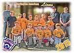 2015 Burlington American Lions