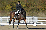 06/11/2016 - Class 3 - Unaffiliated Dressage - Brook Farm Training Centre