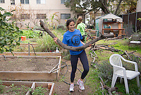 Fountain Community Gardens, Hollywood. Occidental College students, staff and alumni volunteer all over the Los Angeles area as part of MLK Day of Service, organized by the Office of Community Engagement, on Saturday, Jan. 23, 2016.<br /> (Photo by Marc Campos, Occidental College Photographer)