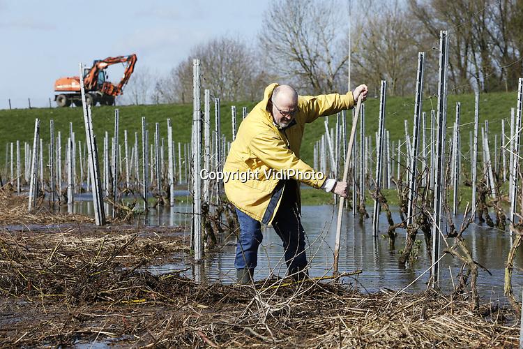 """Foto: VidiPhoto<br /> <br /> DODEWAARD – De hoge waterstand in de grote rivieren stuwt een enorme berg met snoeihout, riet en ander afval de Betuwse uiterwaarden in. Wijnboer Inno Venhorst uit Dodewaard probeert donderdag de smurrie -""""allemaal troep van anderen""""- uit zijn wijngaard te verwijderen. De eigenaar van restaurant/herberg De Engel bezit de enige buitendijkse wijngaard van ons land. Tijdens hoog water staat die blank. Dit jaar is dat al voor de tweede keer. De troep die achterblijft is enorm en kost veel tijd om op te ruimen. Daarom probeert Venhorst de drijvende smurrie, nu zijn druivenstruiken nog in het water staan, weg te duwen Dat is makkelijker dan straks bij elkaar harken. De 22 jaar oude wijngaard levert jaarlijks tussen de 1300-1500 flessen wijn, die geschonken worden in het restaurant van de Betuwse herberg."""