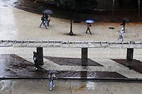 SAO PAULO, SP, 27 DE JANEIRO DE 2012 -Clima tempo vista da Lago do Paissandu,Chuva na manha de hoje  (FOTO: ADRIANO LIMA - NEWS FREE).