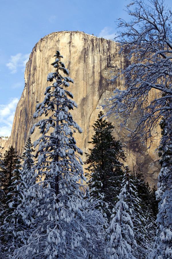 El Capitan - Yosemite National Park, California.