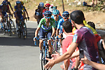 Green Jersey Alejandro Valverde (ESP) and Nairo Quintana (COL) Movistar Team climb Sierra de la Alfaguara during Stage 4 of the La Vuelta 2018, running 162km from Velez-Malaga to Alfacar, Sierra de la Alfaguara, Andalucia, Spain. 28th August 2018.<br /> Picture: Colin Flockton | Cyclefile<br /> <br /> <br /> All photos usage must carry mandatory copyright credit (&copy; Cyclefile | Colin Flockton)