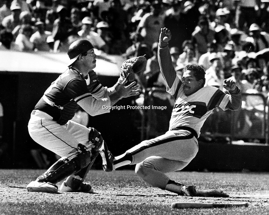 A's catcher Bob Kearney takes throw as Tony Bernazard slides.(1983 photo by Ron Riesterer)