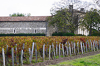 Vineyard. Winery building. Chateau La Grace Dieu des Prieurs. Saint Emilion, Bordeaux, France
