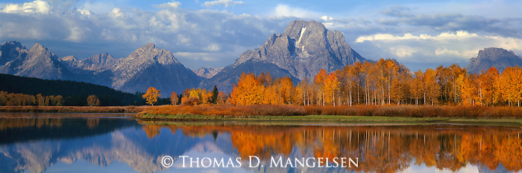 Fall color and the Teton Range are reflected in the still water of Oxbow Bend in Grand Teton National Park.