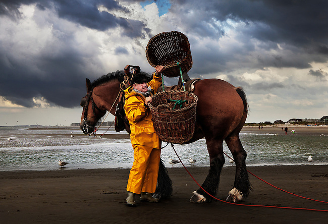 Horseback shrimp fisherman of Oostduinkerke, Belgium. <br />