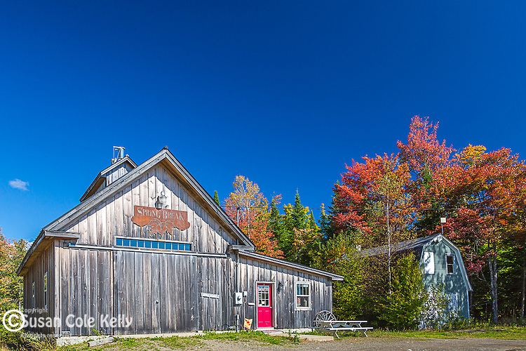 Spring Break Maple & Honey in Smyrna, Maine, USA