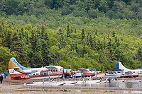 Bush planes on floats deliver tourists to Brooks lodge to view bears and fish for salmon. Naknek lake, Katmai National Park, Alaska.