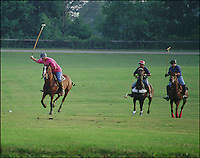 Polo players in action.