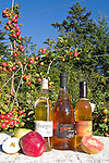 Alpenfire Organic Hard Cider, Alpenfire Orchard, Port Townsend, Jefferson County, Olympic Peninsula, Washington State, Certified organic cider, tasting room and orchard,