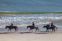 Along the Beach We Walk