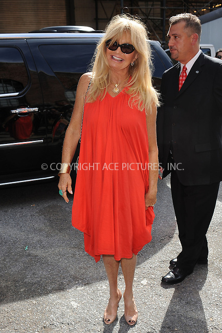WWW.ACEPIXS.COM<br /> September 9, 2013 New York City<br /> <br /> Goldi Hawn seen at Donna Karan Spring 2014 Runway Show in New York City on September 9, 2013.<br /> <br /> By Line: Kristin Callahan/ACE Pictures<br /> ACE Pictures, Inc.<br /> tel: 646 769 0430<br /> Email: info@acepixs.com<br /> www.acepixs.com<br /> Copyright:<br /> Kristin Callahan/ACE Pictures