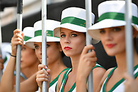 March 26, 2017: The grid girls pose for photographs at the 2017 Australian Formula One Grand Prix at Albert Park, Melbourne, Australia. Photo Sydney Low