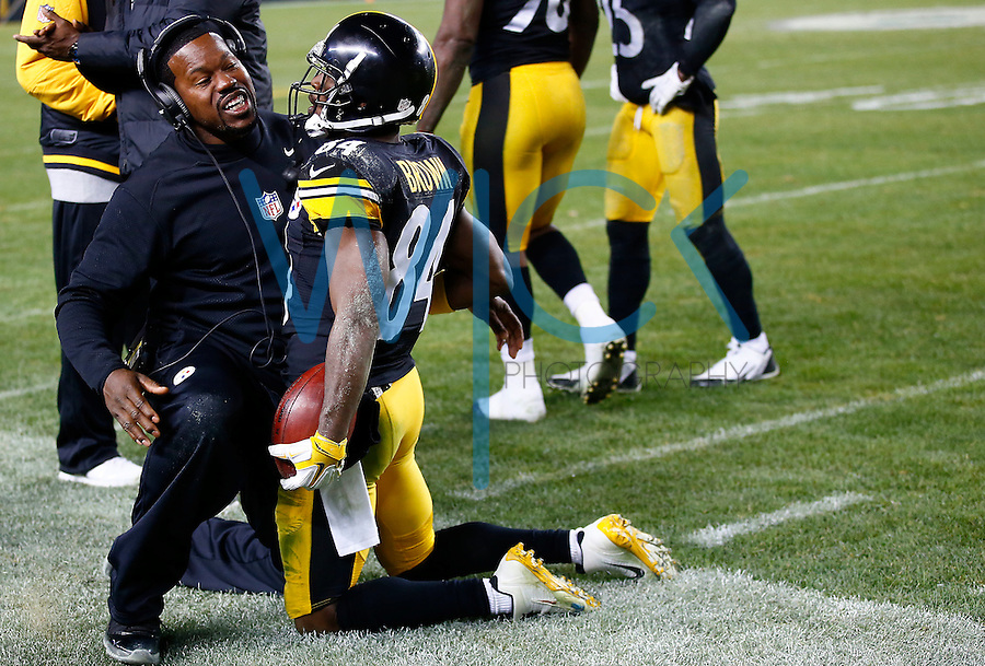 Antonio Brown #84 of the Pittsburgh Steelers celebrates his punt return for a touchdown with outside linebackers coach Joey Porter in the fourth quarter against the Indianapolis Colts during the game at Heinz Field on December 6, 2015 in Pittsburgh, Pennsylvania. (Photo by Jared Wickerham/DKPittsburghSports)