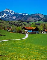 Deutschland, Bayern, Oberbayern, Chiemgau, bei Bergen: Bauernhof vor Hochgern (1.748 m) | Germany, Bavaria, Upper Bavaria, Chiemgau, near Bergen: farm house and Hochgern mountain (1.748 m)