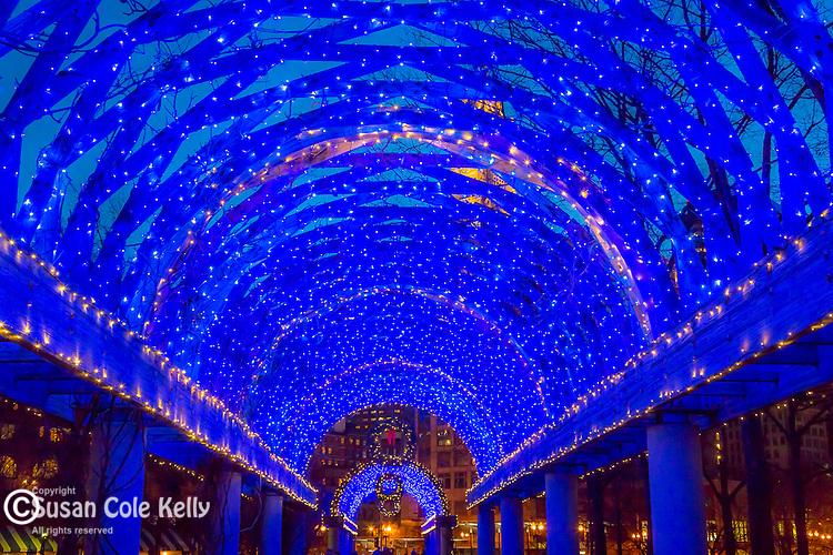 Christmas lights at the waterfront Pergola, Boston, Massachusetts, USA