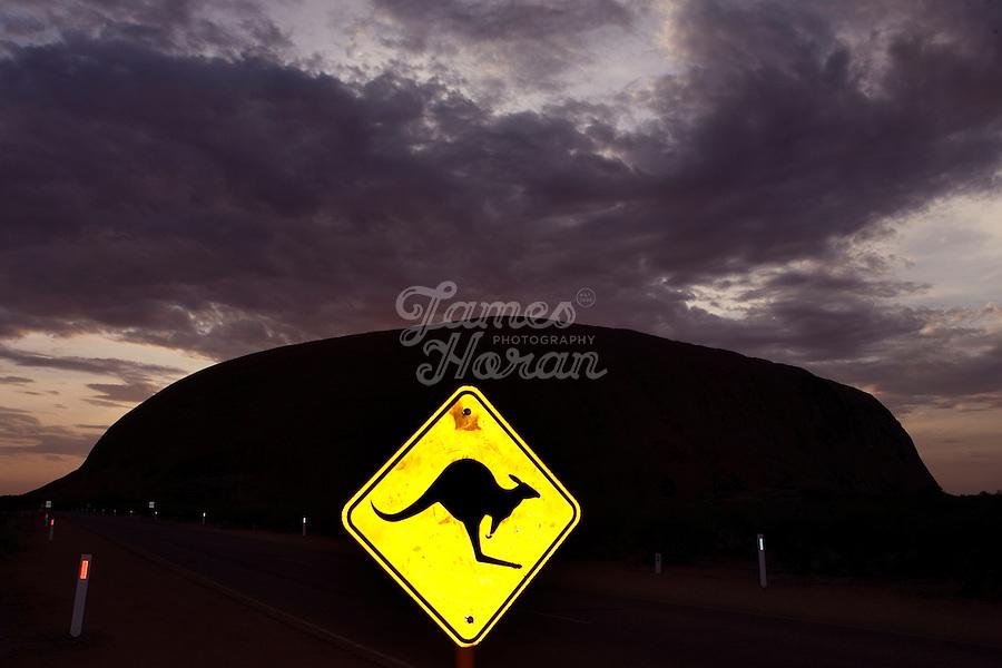 A kangaroo warning sign near Uluru (Ayres rock)at night, NT, Australia
