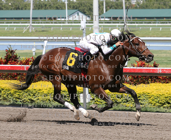 Istan #6 with Manoel Cruz riding won the $100,000 Artax Handicap at Gulfstream Park in Hallandale Beach, Florida on Saturday April 7, 2007. Photo By Jessica Denver/EQUI-PHOTO.