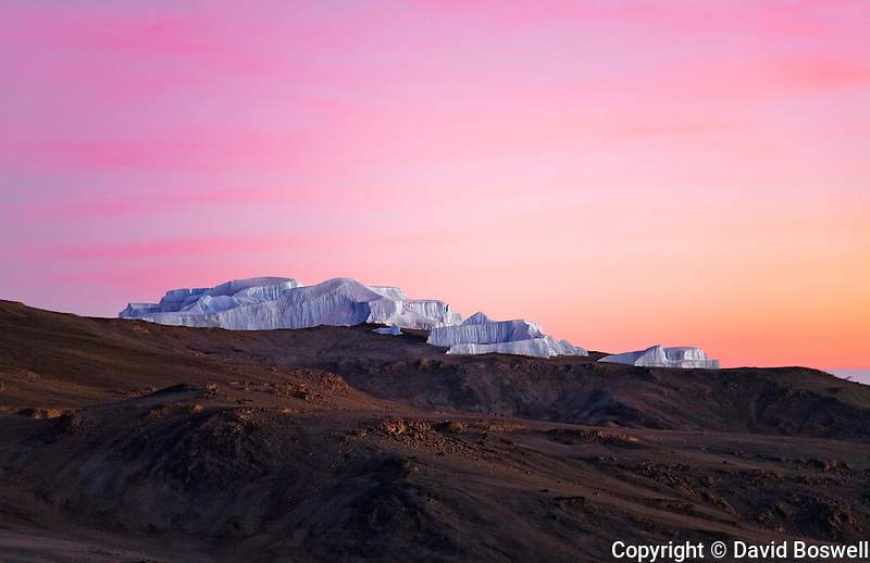 The Eastern Icefield bathed in the colors of the rising sun.  The Eastern Icefield is one of the glaciers on the summit of Mount Kilimanjaro.
