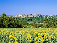 France, Languedoc-Roussillon, Département Aude, Carcassonne: view over sunflowers to the City (la Cite), since 1997 UNESCO World Cultural Heritage | Frankreich, Languedoc-Roussillon, Département Aude, Carcassonne: Cité de Carcassonne, seit 1997 Weltkulturerbe der UNESCO
