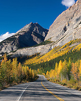 Scenic Icefields Parkway in Alberta Canada